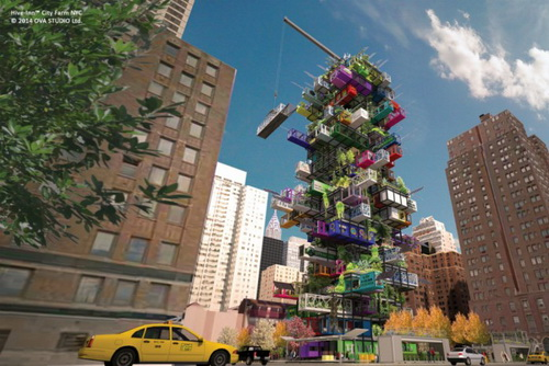 hive_inn_city_farm_ova_studio_nyc_2-700x468.jpg